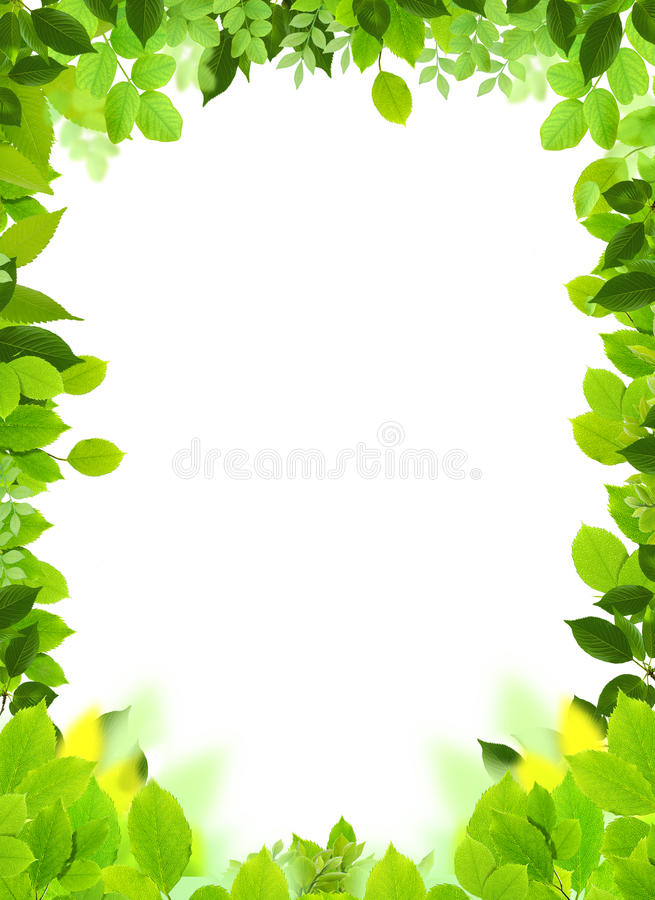 Natural frame and template stock illustration. Illustration of green ...