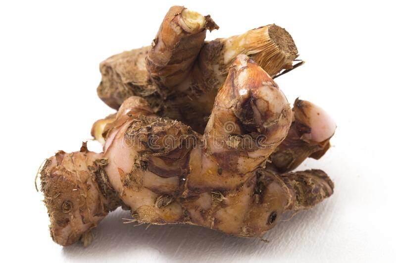 Natural galangal rhizomes in indonesia called lengkuas or laos are used in traditional asian cuisines,. Isolated on white background stock photos