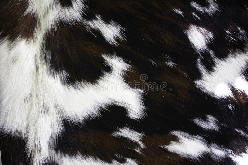 Natural goat skin. In carpet, furs and textures stock photography