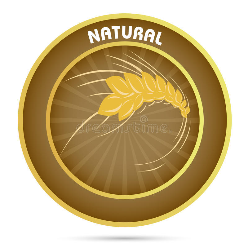 Download Natural grain stock vector. Image of nature, background - 17558134