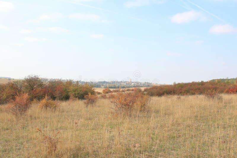 Traviny Nature Reserve, Czech Republic royalty free stock image
