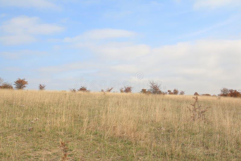 Traviny Nature Reserve, Czech Republic stock photography