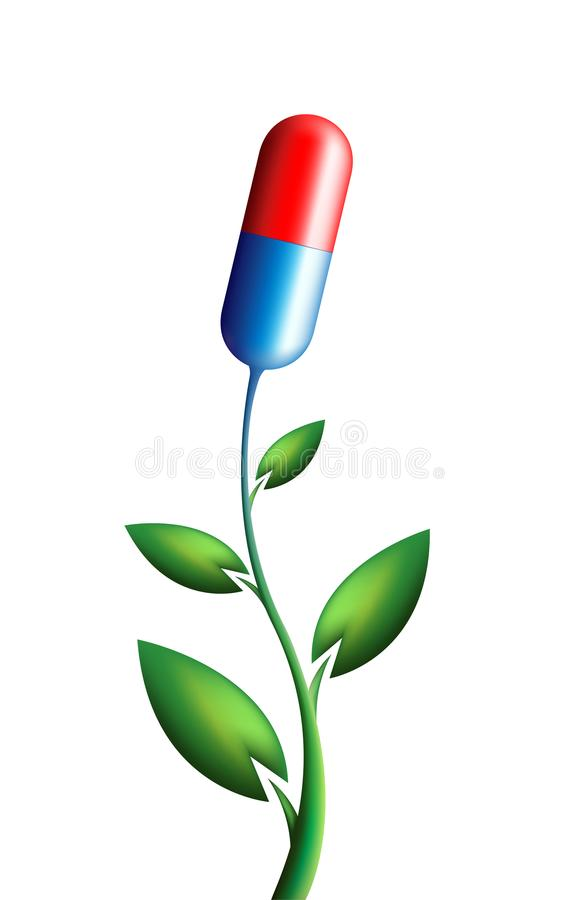 Natural green alternative medicine concept - plant with capsule instead of flower. Vector illustration stock illustration