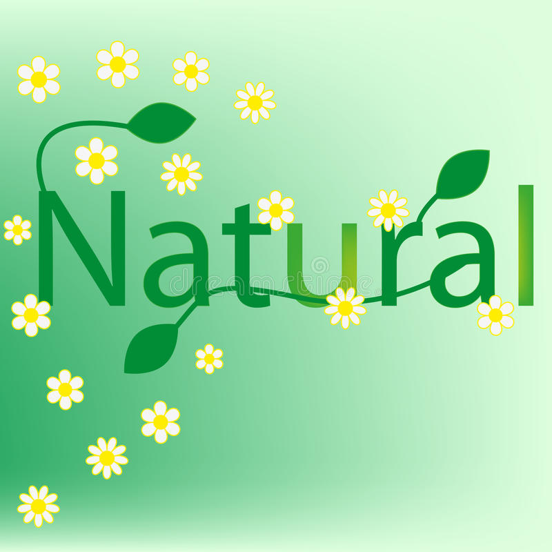 Natural green background royalty free stock photo