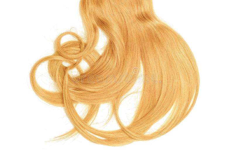 Bad hair day concept. Long, blond, disheveled ponytail. Natural healthy hair isolated on white background. Detailed clipart for your collages and illustrations royalty free stock image