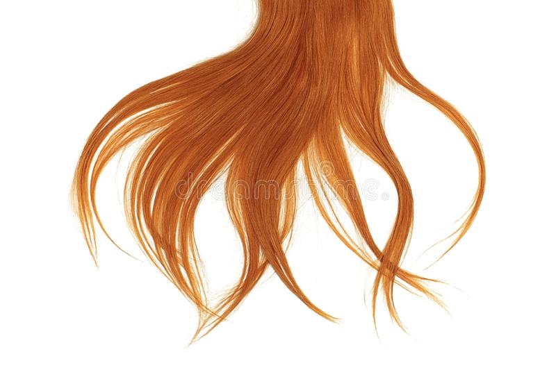 Bad hair day concept. Long, red, disheveled ponytail. Natural healthy hair isolated on white background. Detailed clipart for your collages and illustrations stock photography
