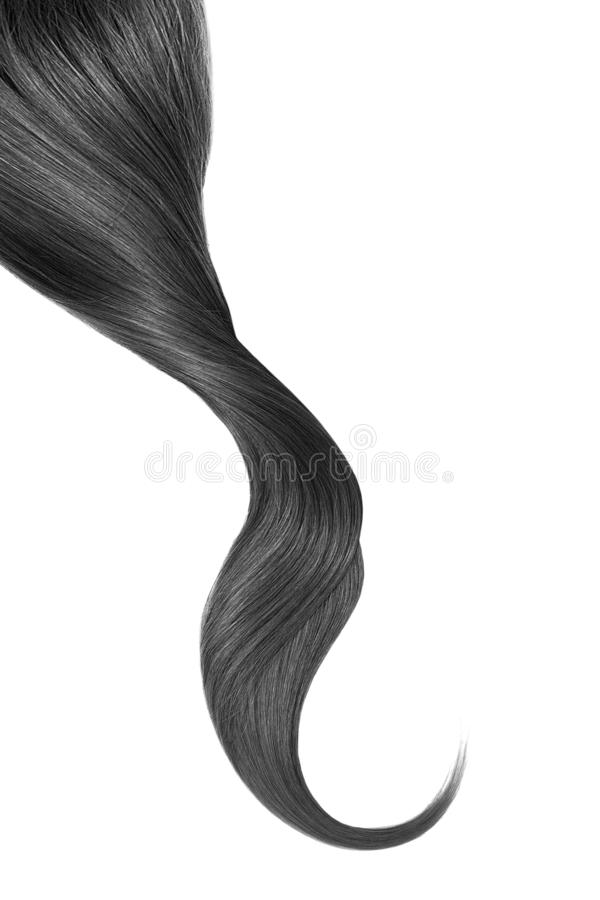 Black hair, isolated on white background. Long wavy ponytail. Natural healthy hair isolated on white background. Detailed clipart for your collages and stock image