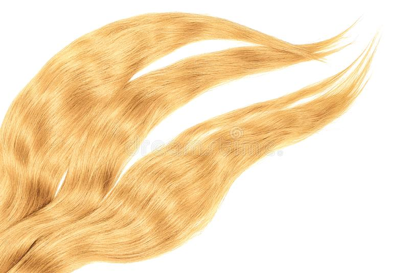 Blond hair isolated on white background. Long disheveled ponytail. Natural healthy hair isolated on white background. Detailed clipart for your collages and stock image