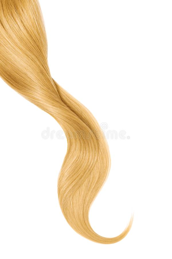Blond hair, isolated on white background. Long wavy ponytail. Natural healthy hair isolated on white background. Detailed clipart for your collages and stock image