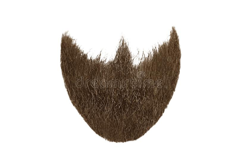 Brown beard isolated on white. Mens fashion royalty free stock photography