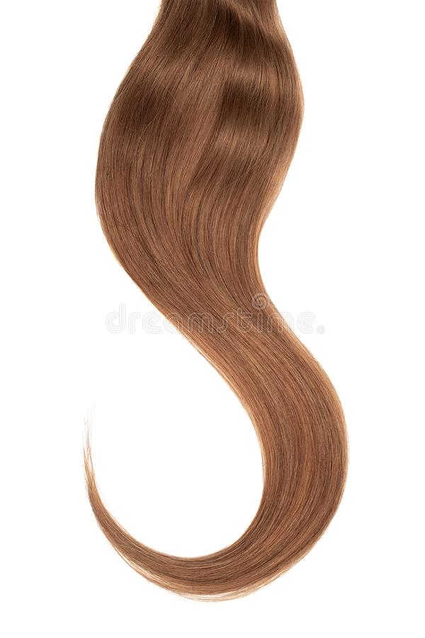 Brown dark hair isolated on white background. Long wavy ponytail stock photos