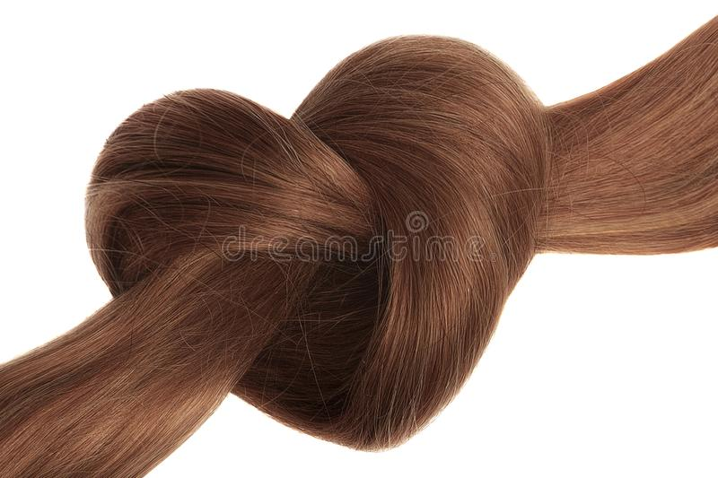 Brown hair knot in shape of heart, isolated on white. Natural healthy hair isolated on white background. Detailed clipart for your collages and illustrations royalty free stock photography