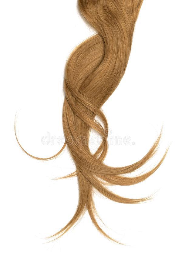 Brown hair, isolated on white background. Long and disheveled ponytail. Natural healthy hair isolated on white background. Detailed clipart for your collages and stock image