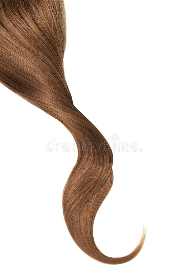 Brown hair, isolated on white background. Long wavy ponytail. Natural healthy hair isolated on white background. Detailed clipart for your collages and stock image