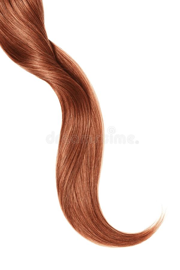 Curl of natural henna hair, isolated on white background stock photography