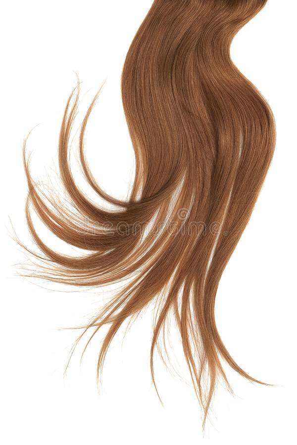 Disheveled brown hair isolated on white background. Natural healthy hair isolated on white background. Detailed clipart for your collages and illustrations royalty free stock images