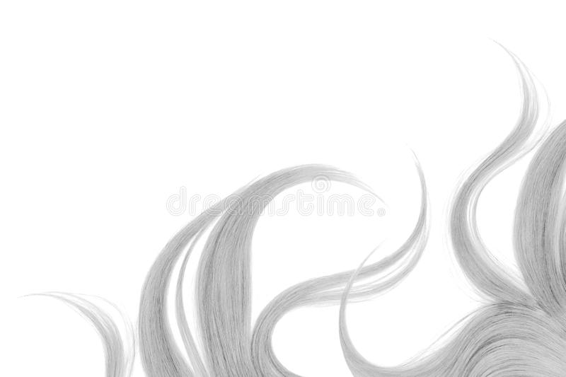 Long disheveled gray hair, isolated on white background. Natural healthy hair isolated on white background. Detailed clipart for your collages and illustrations royalty free stock images