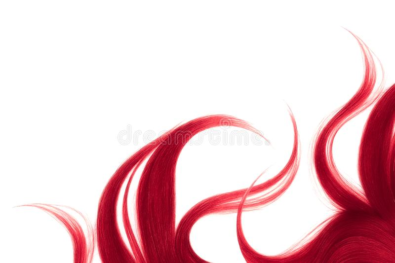 Long disheveled pink hair, isolated on white background. Natural healthy hair isolated on white background. Detailed clipart for your collages and illustrations stock photo