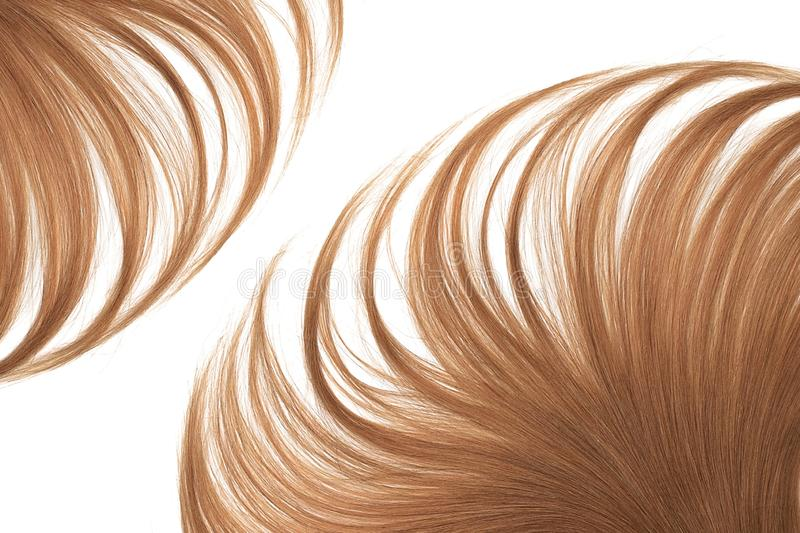 Lush brown hair isolated on white background. Natural healthy hair isolated on white background. Detailed clipart for your collages and illustrations royalty free stock images
