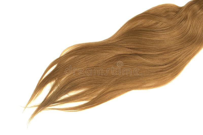 Lush brown hair isolated on white background. Natural healthy hair isolated on white background. Detailed clipart for your collages and illustrations stock photography