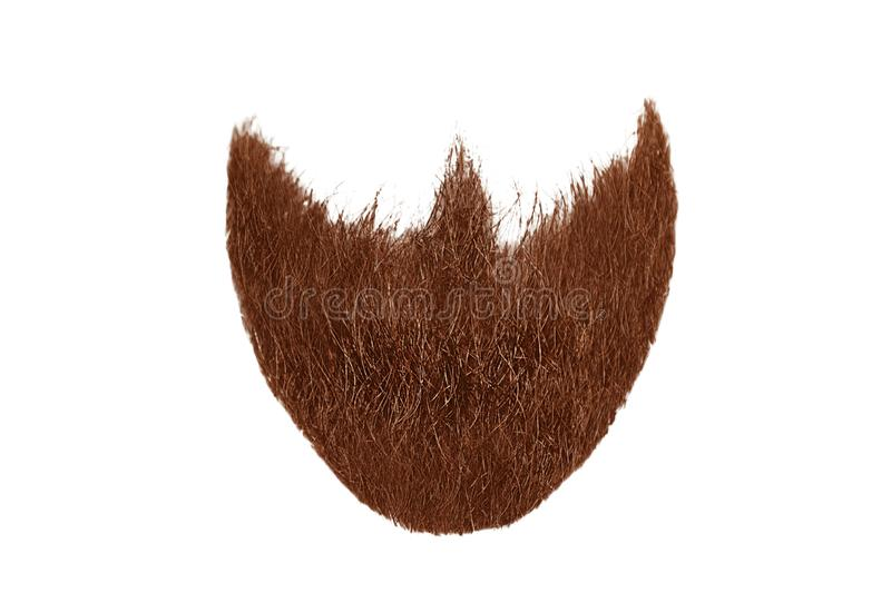 Red beard isolated on white. Mens fashion. Natural healthy hair isolated on white background. Detailed clipart for your collages and illustrations royalty free stock images