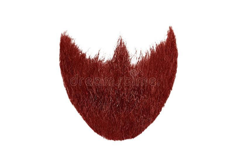 Red beard isolated on white. Mens fashion. Natural healthy hair isolated on white background. Detailed clipart for your collages and illustrations stock photography