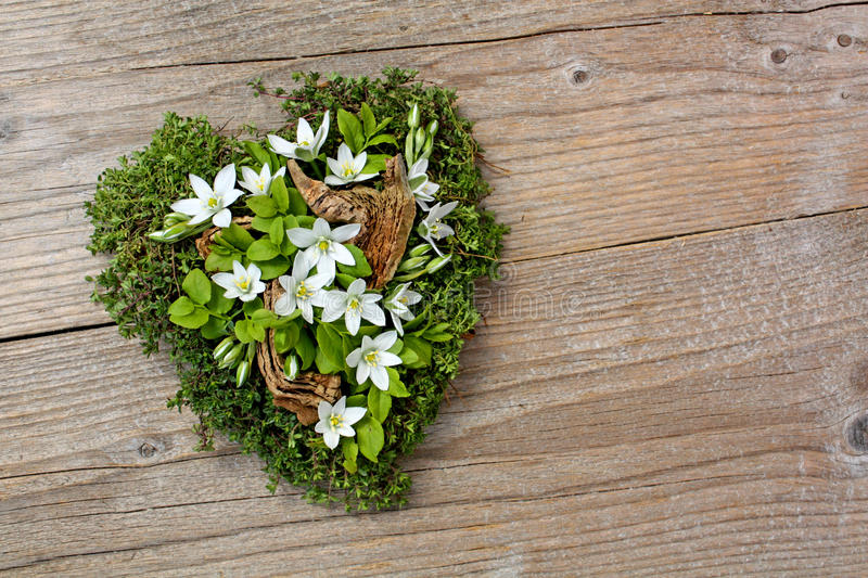 Natural Heart Stock Photography
