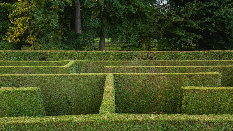 Natural hedge labyrinth maze royalty free stock photography
