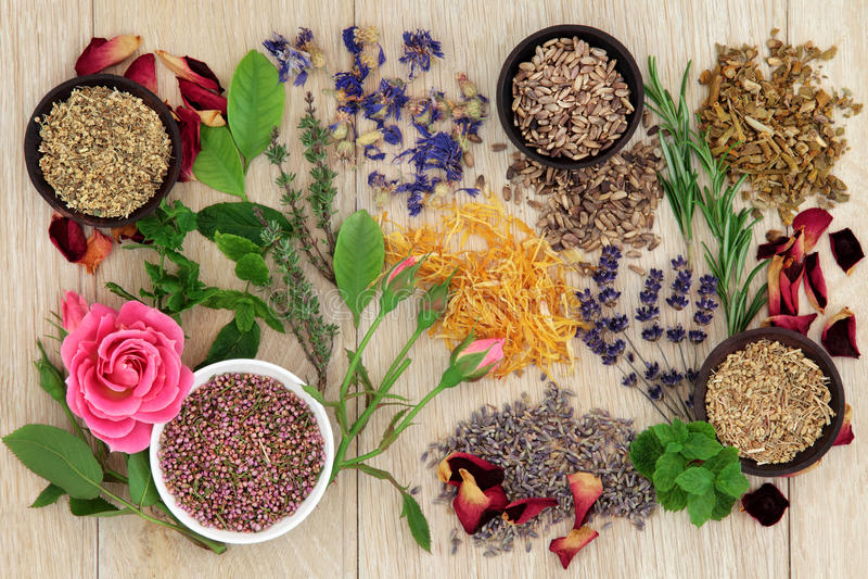 Natural Herbal Medicine stock photography