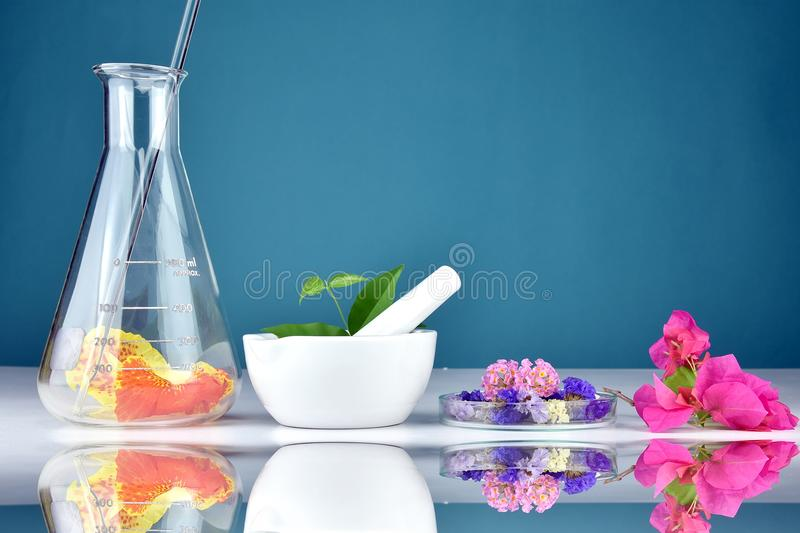 Natural herbal organic drug research and lab glassware, Chemist and plant extract substances in mortar. Natural herbal organic drug research and lab glassware stock images