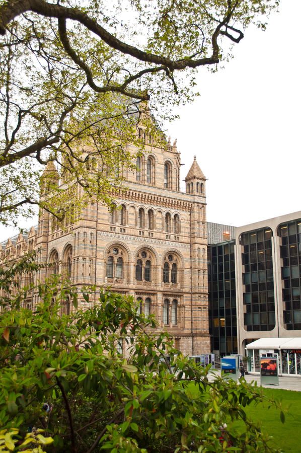 The Natural History Museum Editorial Stock Image