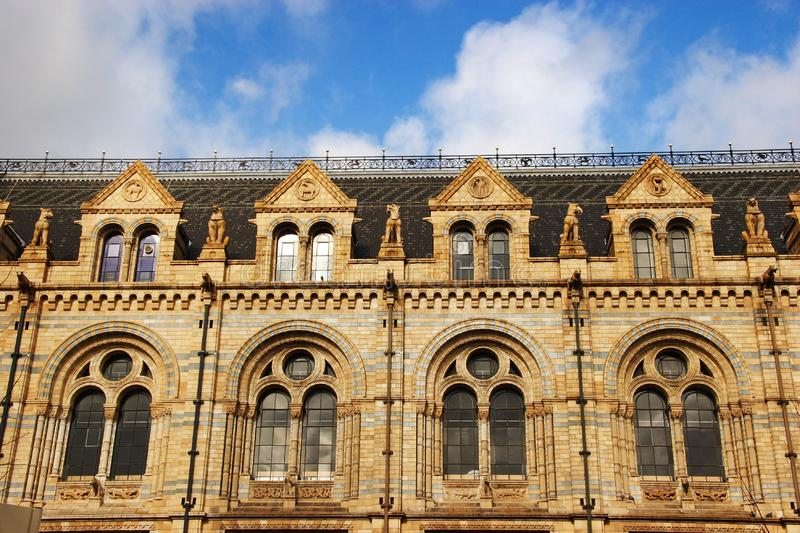 Natural history Museum - windows royalty free stock photography