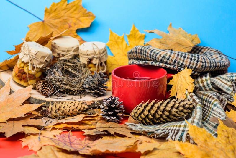 Natural homemade treats autumn season keep healthy. Autumnal beverage with homemade natural sweets. Set three honey stock image