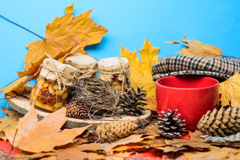 Natural homemade treats autumn season keep healthy. Set three honey natural sweets in jars and mug of tea background stock photo