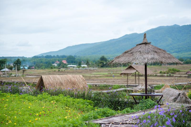 Natural  homestay ,Best Organic Farm Stays in Thailand. Natural  homestay ,Best Organic Farm Stays in Thailand royalty free stock image