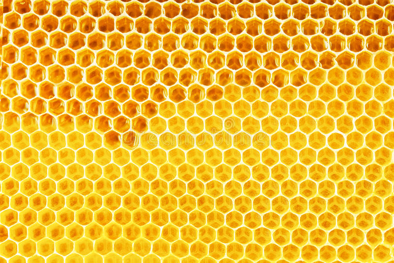 Natural honey in honeycomb background stock illustration download natural honey in honeycomb background stock illustration illustration of beeswax honeyed 46171098 voltagebd Image collections
