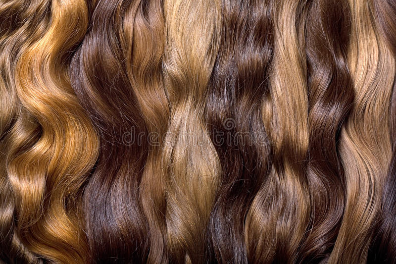 Natural human hair. On a white background royalty free stock photo