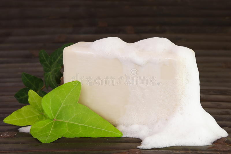 Download Natural Ingredients Soap With Foam Stock Image - Image: 18897023