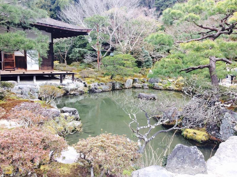 Natural Japan tree and pond stock photos