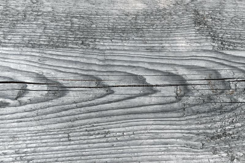 Natural knotted gray weathered wood plank texture background.  royalty free stock photos