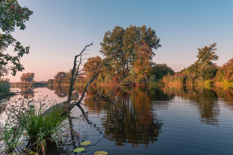 Natural lake scenery during autumn / fall season with colorful trees. View on the natural lake early in the morning during autumn / fall season with colorful royalty free stock images