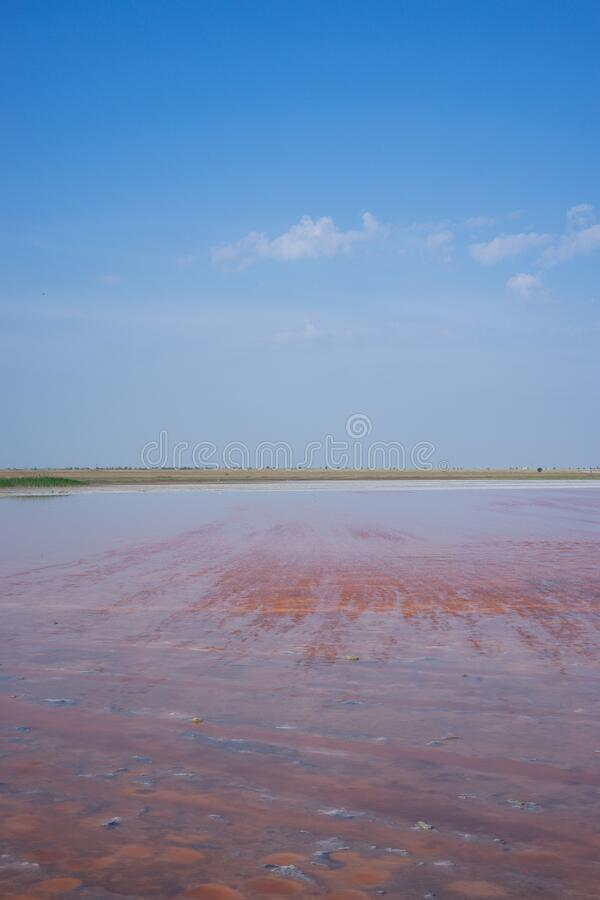 Natural landscape with a view of the pink salt lake. Evpatoria, Crimea stock photo