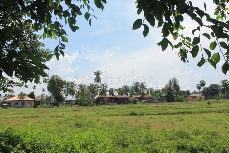Natural landscapes,Laos stock images