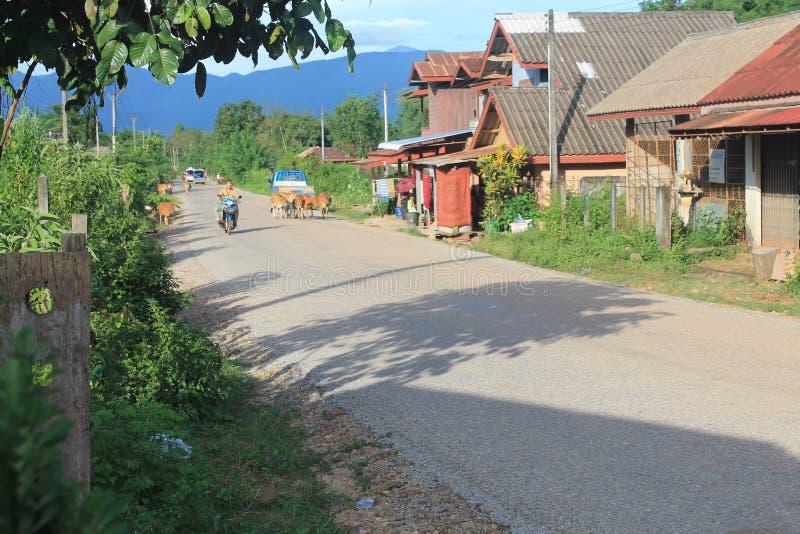 Natural landscapes,Laos royalty free stock image