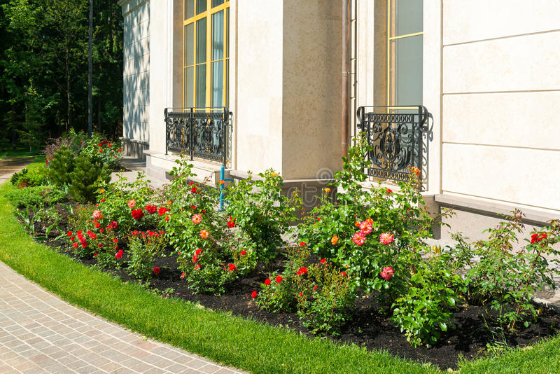 Natural landscaping in home garden stock image