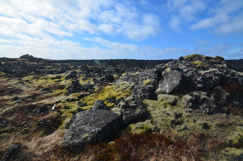 Natural lava field in Iceland with volcanic rocks stock photo