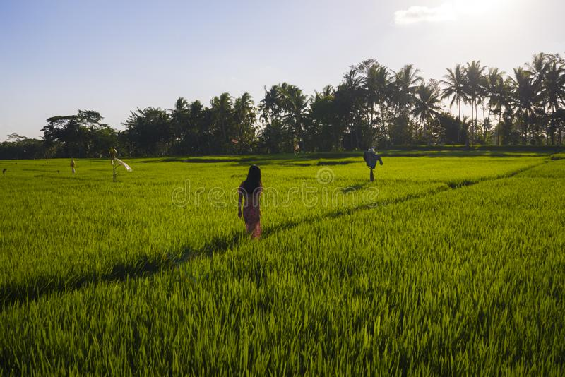 Natural lifestyle portrait of young beautiful and happy Asian Korean woman in elegant Summer dress walking carefree and relaxed. At fresh tropical rice field stock images