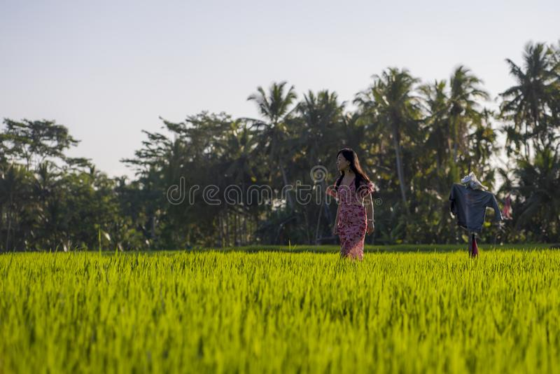 Natural lifestyle portrait of young beautiful and happy Asian Korean woman in elegant Summer dress walking carefree and relaxed. At fresh tropical rice field royalty free stock image