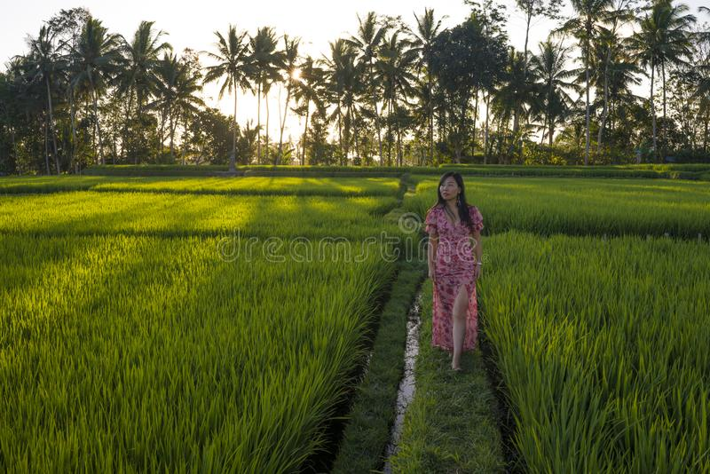 Natural lifestyle portrait of young beautiful and happy Asian Korean woman in elegant Summer dress walking carefree and relaxed. At fresh tropical rice field royalty free stock images