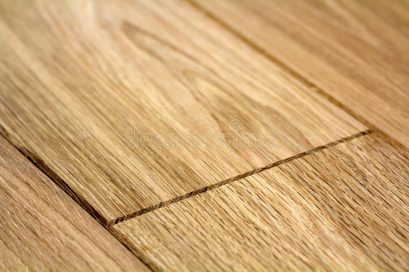 Natural light brown wooden parquet floor boards. Sunny soft yellow texture, copy space perspective background.  royalty free stock images